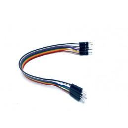 10 cables  Dupont de  para...