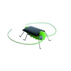 Robot grillo solar